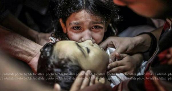 Music Nation - Mohammed Assaf - Gaza - Palestine  (4)