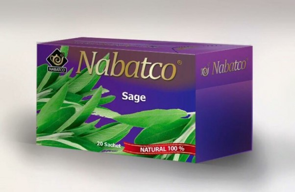 Music Nation - Nabatco (2)