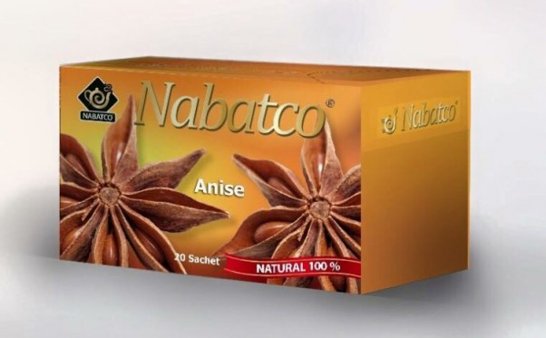 Music Nation - Nabatco (3)