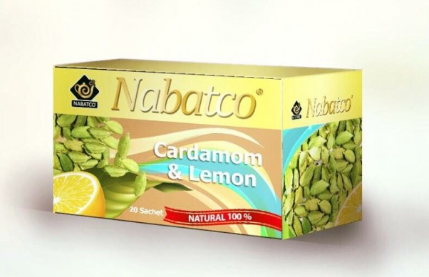 Music Nation - Nabatco (5)