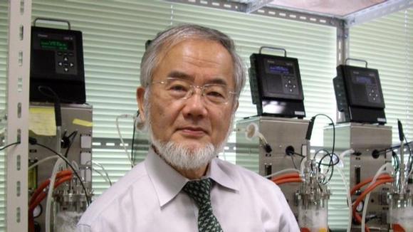 japan-kyoto-prize1_resized