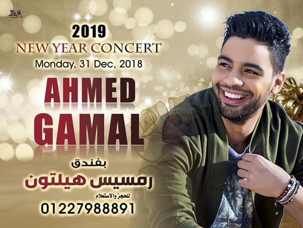 Music Nation - New Year 2019 - Concerts (133)